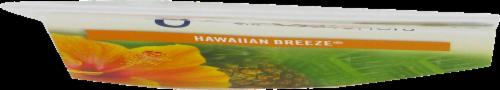 Glade Hawaiian Breeze Car Air Fresheners Perspective: top