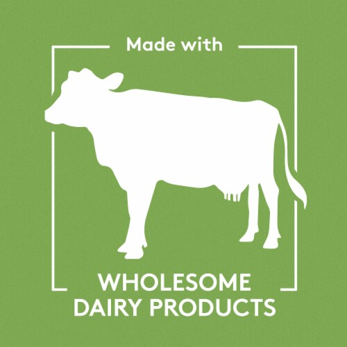 Philadelphia Spinach and Artichoke Dip Perspective: top