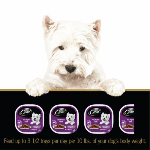 Cesar Canine Cuisine Filet Mignon Flavor Wet Dog Food Perspective: top