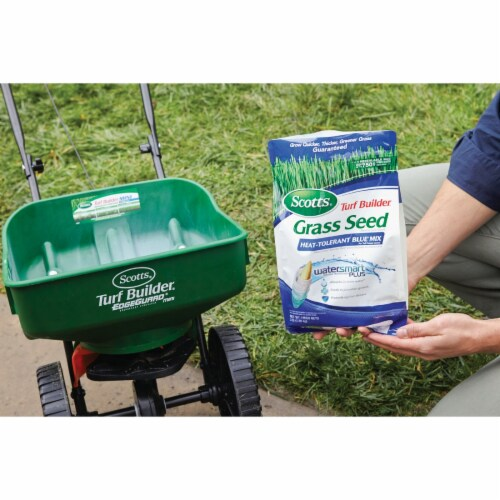 Scotts Turf Builder 3 Lb. 750 Sq. Ft. Coverage Heat Tolerant Blue Grass Seed Perspective: top