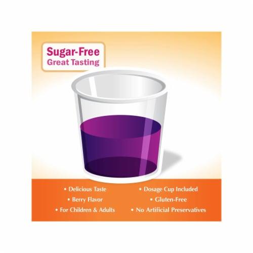 Nature's Way Sugar Free Sambucus Elderberry Syrup Perspective: top
