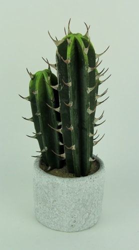 Artificial Cactus in Round Cement Planter 13 inch Perspective: top
