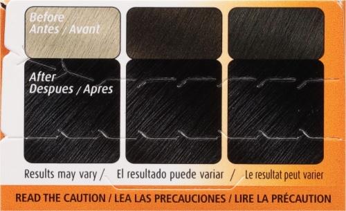 Bigen 59 Oriental Black Hair Color Perspective: top