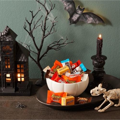 Hershey's Halloween Assortment Candy Perspective: top