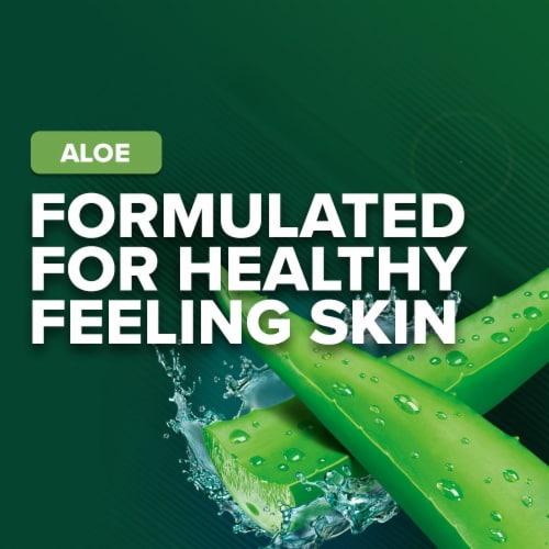 Irish Spring Aloe Deodorant Bar Soap Perspective: top