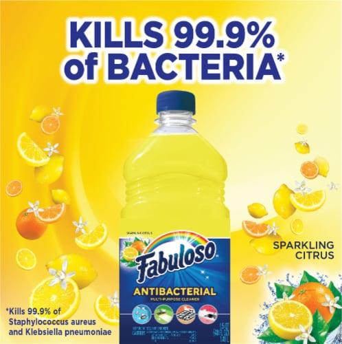 Fabuloso® Sparkling Citrus Antibacterial Multi-Purpose Cleaner Perspective: top