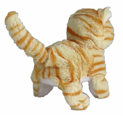 Casanova The Mechanical Kitten - Orange Striped Perspective: top