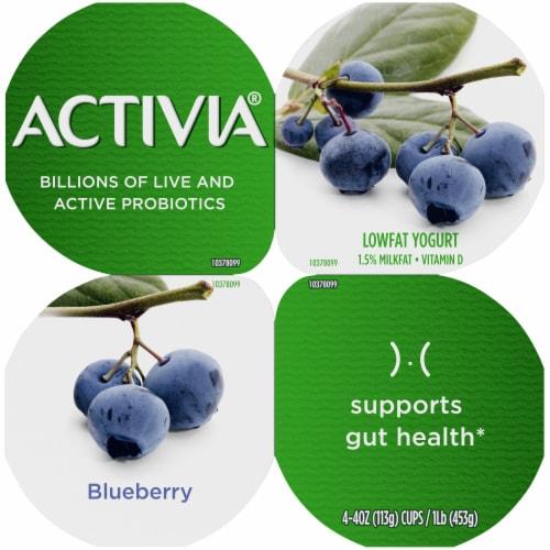 Activia Lowfat Blueberry Probiotic Yogurt Perspective: top