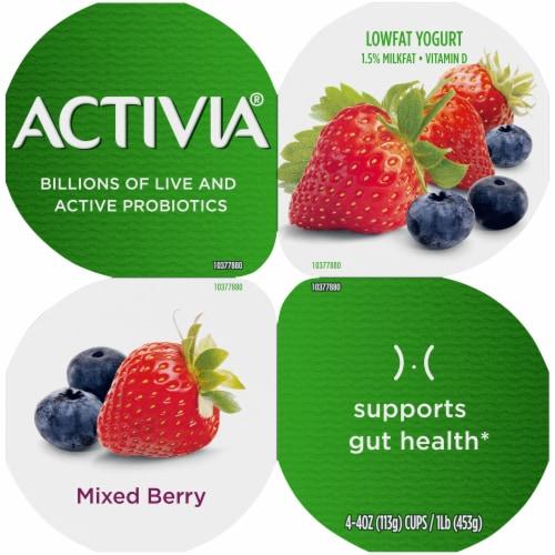Activia Mixed Berry Lowfat Probiotic Yogurt Perspective: top