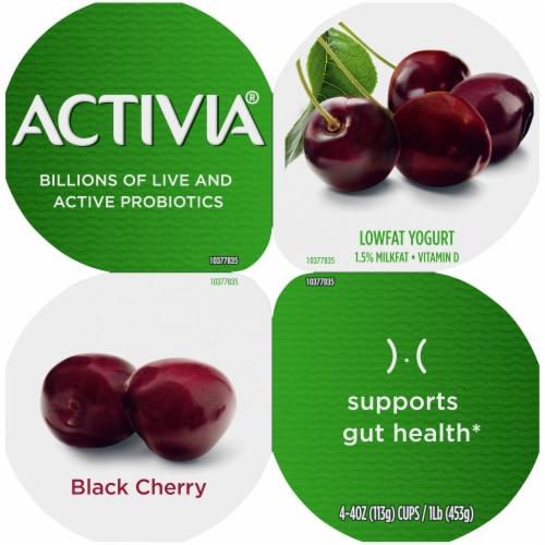 Activia Black Cherry Lowfat Probiotic Yogurt Perspective: top