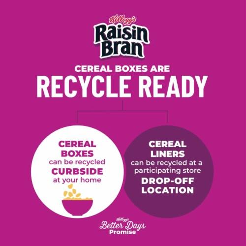 Kellogg's Raisin Bran High Fiber Original Breakfast Cereal Perspective: top