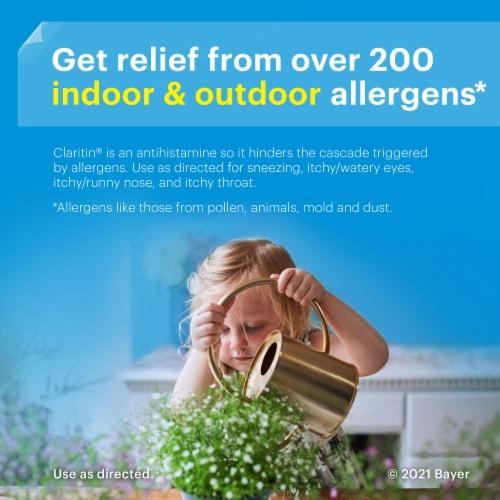 Children's Claritin Bubblegum 24 Hour Allergy Chewables Perspective: top