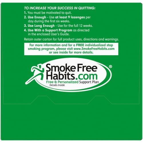 Kroger® Mint Flavor Nicotine Lozenges 4mg Perspective: top