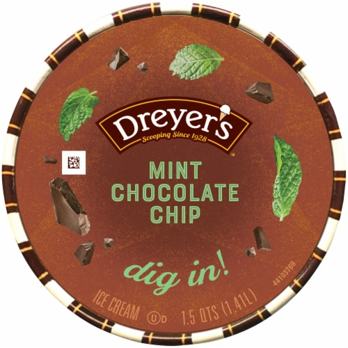 Dreyer's™ Mint Chocolate Chip Ice Cream Perspective: top