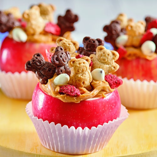 Teddy Grahams Chocolate Graham Snacks Perspective: top
