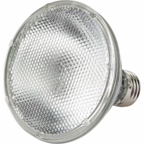 Philips 53-Watt (75-Watt) PAR30S Floodlight Bulb Perspective: top