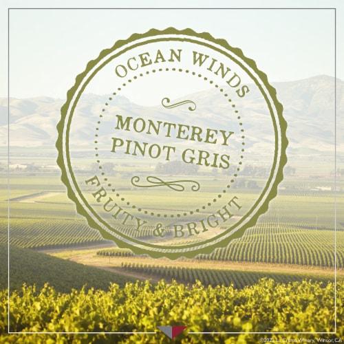 La Crema Monterey Pinot Gris White Wine Perspective: top
