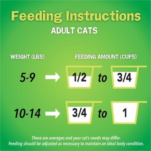 Friskies Indoor Delights Dry Cat Food Perspective: top