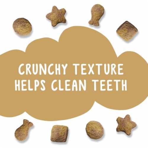 Friskies Party Mix Gravylicious Crunch Chicken & Gravy Flavored Cat Treats Perspective: top
