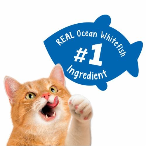 Friskies Party Mix Beachside Crunch Cat Treats Perspective: top
