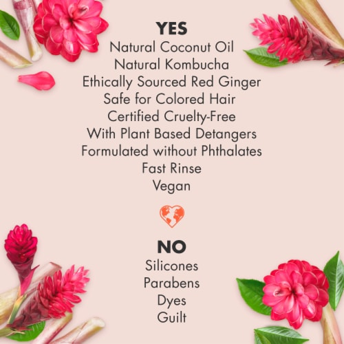 Love Beauty and Planet Silicone-Free Black Tea Kombucha & Red Ginger Nourishing Conditioner Perspective: top