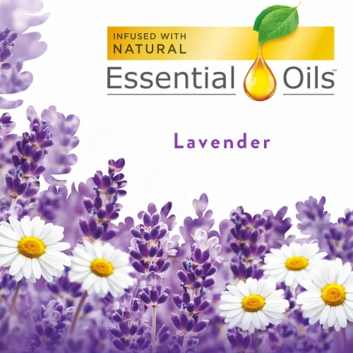 Air Wick Lavender & Chamomile Scented Oil Refills Perspective: top