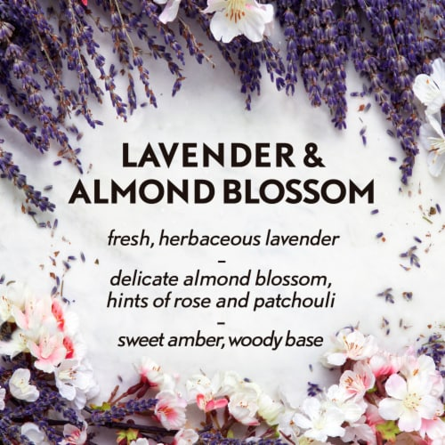 Air Wick® Lavender Almond Blossom Fragrance Essential Mist Diffuser Perspective: top
