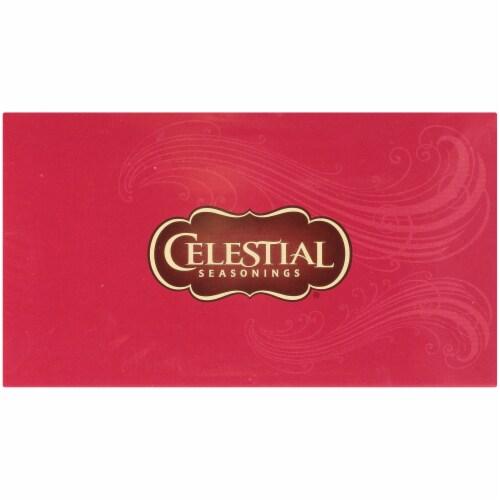 Celestial Seasonings Cool Brew Raspberry Iced Black Tea Bags Perspective: top