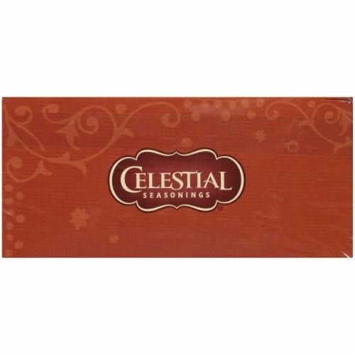 Celestial Seasonings Fireside Vanilla Spice Herbal Tea Bags Perspective: top