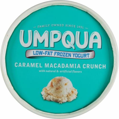 Umpqua Caramel Macadamia Nut Nonfat Frozen Yogurt Perspective: top