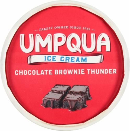 Umpqua Chocolate Brownie Thunder Ice Cream Perspective: top