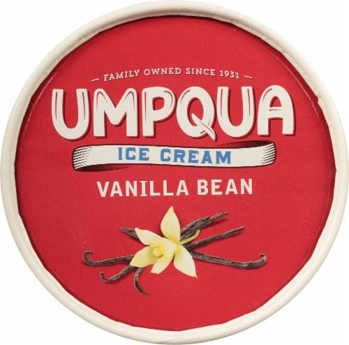 Umpqua Dairy Vanilla Bean Ice Cream Perspective: top