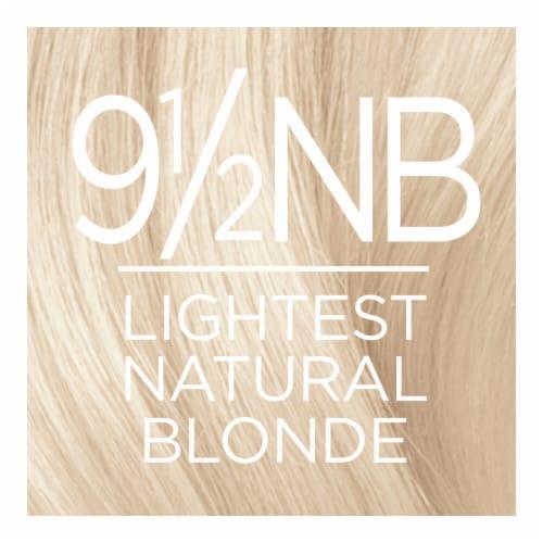 L'Oreal Paris Excellence Creme 9 1/2NB Lightest Natural Blonde Hair Color Perspective: top
