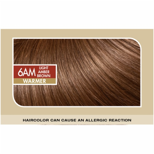 L'Oreal Paris Superior Preference Permanent Hair Color Kit - 6AM Light Amber Brown Perspective: top