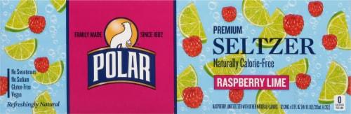 Polar Raspberry Lime Seltzer Perspective: top