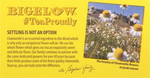Bigelow Lavender Chamomile Tea Bags Perspective: top
