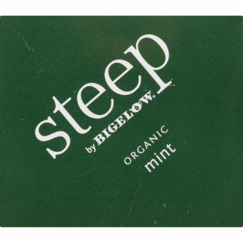 Bigelow Steep Organic Mint Herbal Tea Perspective: top