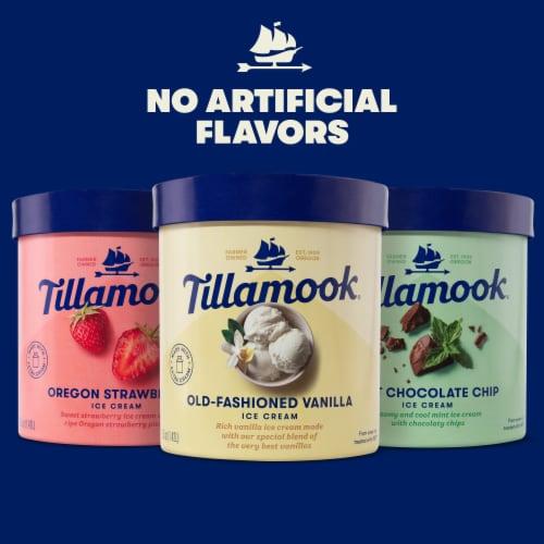 Tillamook Mint Chocolate Chip Ice Cream Perspective: top
