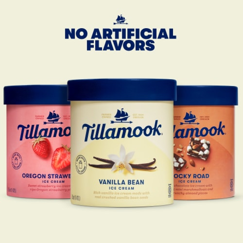 Tillamook Rocky Road Ice Cream Perspective: top
