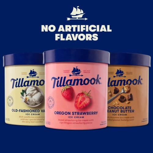 Tillamook Chocolate Peanut Butter Ice Cream Perspective: top