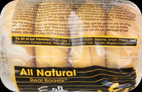 Bagels Forever Egg Bagels Perspective: top