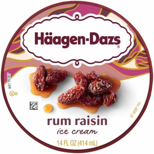 Haagen-Dazs Rum Raisin Ice Cream Perspective: top