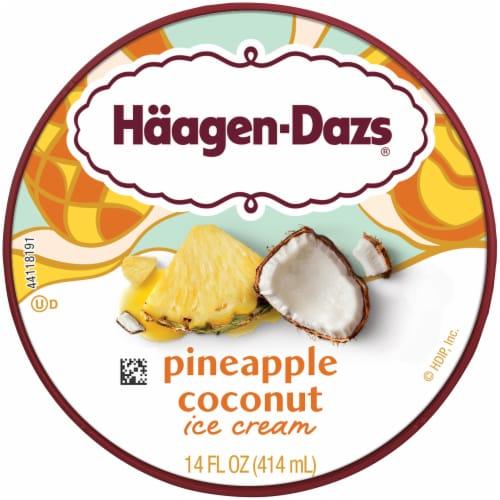 Haagen-Dazs Pineapple Coconut Ice Cream Perspective: top
