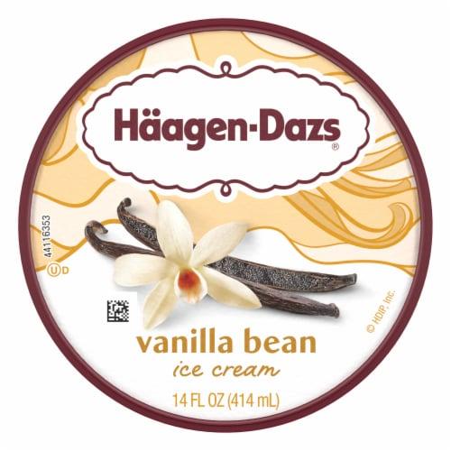 Haagen-Dazs Gluten Free Vanilla Bean Ice Cream Perspective: top