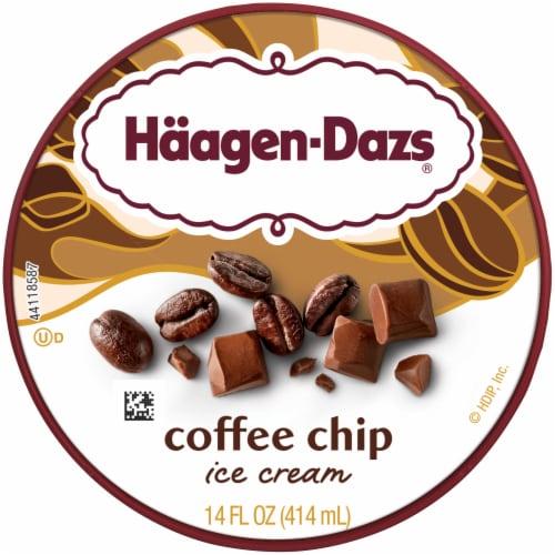Haagen-Dazs® Gluten Free Coffee Chip Ice Cream Perspective: top