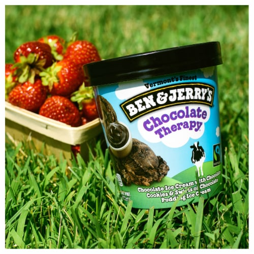 Ben & Jerry's Chocolate Therapy Ice Cream Perspective: top