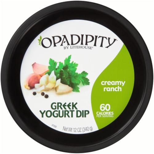 Opadipity by Litehouse Creamy Ranch Greek Yogurt Dip Perspective: top