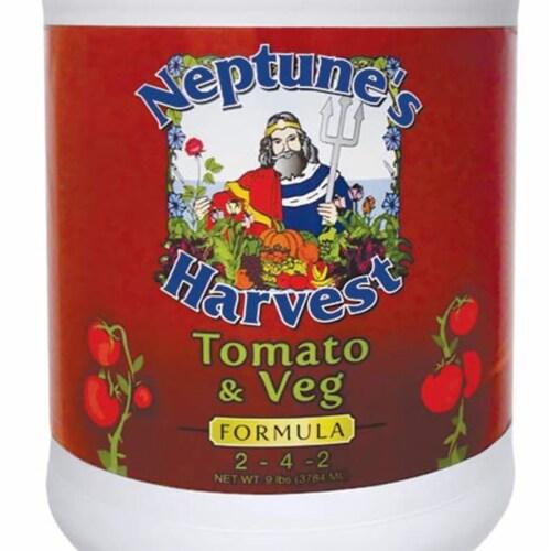 Neptune's Harvest Tomato & Vegetable Vegging Stage Fertilizer Formula, 1 Gallon Perspective: top