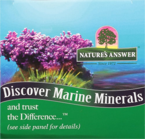 Nature's Answer Plant Based Calcium 500 mg / Magnesium 250 mg Dietary Supplement Perspective: top