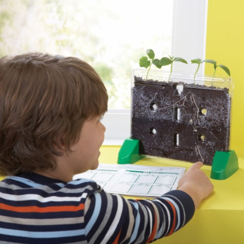 Educational Insights Sprout & Grow Window Perspective: top